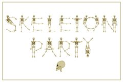 Lettering skeleton party with dancing skeletons font, set of let Stock Photos