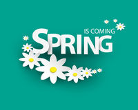 Lettering spring is coming. Paper Flowers with shadow on blue background. Stock Images