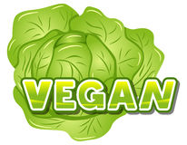 Lettering vegan in front of a lettuce Stock Photos