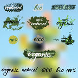 Lettering. Words - natural, eco, bio, organic 100%. Eco logos. Blurred green and blue background. lettering. Words - natural, eco, bio, organic 100%. Vector vector illustration