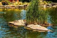 Letterman ψηφιακή λίμνη νερού τεχνών ανακυκλωμένη κέντρο στο Lucas στοκ φωτογραφία με δικαίωμα ελεύθερης χρήσης