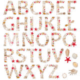Letters. Abc, alphabet - letters arranged from sea shells and starfishes Royalty Free Stock Images
