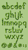 Letters of the alphabet in green colors Royalty Free Stock Photo
