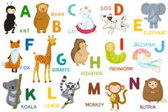Letters and animals ABC Stock Photos