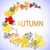 Letters autumn and maple leaves Stock Image