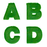 Letters A,B,C,D made of green grass isolated on white Stock Photo