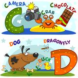 The letters c and d. English alphabet with letters c and d and pictures to them vector illustration