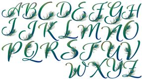 Letters decorated with peacock feathers. Illustrations of Isolated green mixed blue characters decorated with elegant peacock feathers Royalty Free Stock Photos