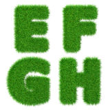 Letters E F G H  isolated on white, ecology concept, 3d illustration Stock Photo