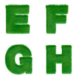 Letters E,F,G,H made of green grass isolated on white Stock Images