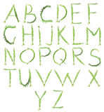 Letters of green twigs Stock Images