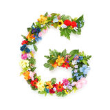 Letters of leaves and flowers. Letters made of leaves and flowers Stock Images