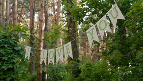 Letters on line between trees in the forest with stock video footage