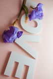 Letters LOVE with iris flowers Royalty Free Stock Photos