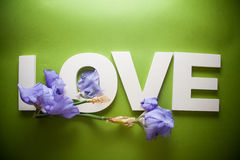 Letters LOVE with iris flowers Royalty Free Stock Photography
