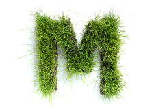 Letters made of grass Royalty Free Stock Photos