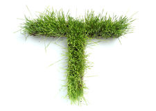Letters made of grass Royalty Free Stock Images