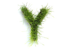 Letters made of grass Royalty Free Stock Photo