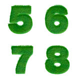 Letters 5,6,7,8 made of green grass isolated on white Stock Photography