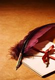 Letters old-fashioned. Still-life with  a letters, a quill on a rustic surface Royalty Free Stock Images