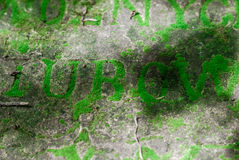 Letters On The Tomb Of 19th Century Overgrown With Moss. Forgotten Place. Stock Photography