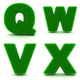 Letters Q, W,V, X of 3d Green Grass - Set. Stock Image