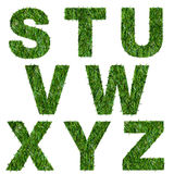 Letters s,t,u,v,w,x,y,z made of green grass Royalty Free Stock Image