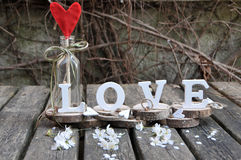 Letters spelling out the word love. Wooden letters spelling out the word love, outdoor image Royalty Free Stock Image