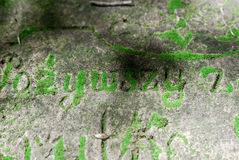 Letters on the tomb of 19th century overgrown with moss. Forgott Stock Photography