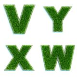 Letters V, Y, X, W as Lawn - Set of 3d. Stock Image