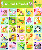 Letters. A vector illustration of cute animal alphabet from A to Z Royalty Free Stock Photography
