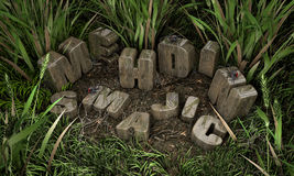Letters. Wood letters lost in grass Royalty Free Stock Photos