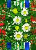 Letterwielen en unie en bladeren en bloemen en Stock Foto's