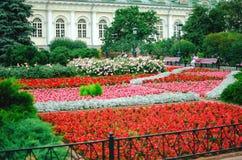Letti di fiore di fioritura in Alexander Garden immagini stock libere da diritti