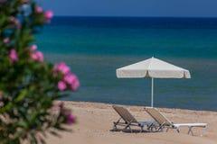 Letti di Sun sulla spiaggia esotica Immagini Stock
