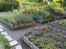 Letti di vimini elevati verdura Attrezzatura di giardinaggio per i giardinieri domestici Immagine Stock