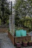 Letti e pianta alzati di giardinaggio urbani Protectorsn Fotografie Stock