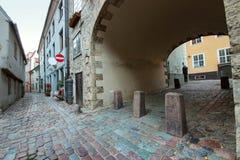 Lettische Architektur Lizenzfreie Stockfotografie