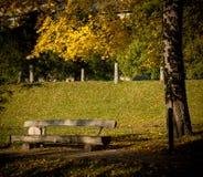 Lettiskt landskap Arkivfoton