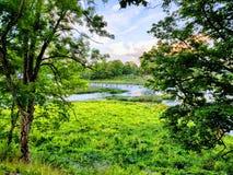 lettland stockfoto