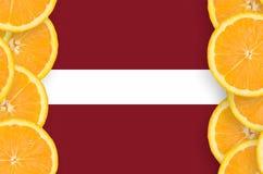 Lettland flagga i vertikal ram för citrusfruktskivor fotografering för bildbyråer