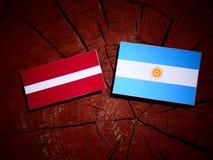 Lettland flagga med den argentinska flaggan på en trädstubbe Royaltyfria Bilder