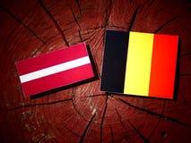 Lettland flagga med den belgiska flaggan på en isolerad trädstubbe Royaltyfri Foto