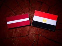 Lettland flagga med den egyptiska flaggan på en trädstubbe Royaltyfri Foto
