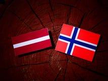 Lettland flagga med den norska flaggan på en isolerad trädstubbe Royaltyfri Foto
