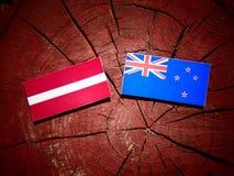 Lettland flagga med den nyazeeländska flaggan på en isolerad trädstubbe Arkivbilder