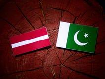 Lettland flagga med den Pakistan flaggan på en isolerad trädstubbe Royaltyfri Bild