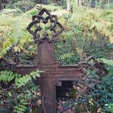 Lettland gammal kyrkogård royaltyfri bild