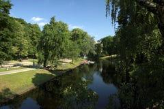Lettland green. Fotografering för Bildbyråer