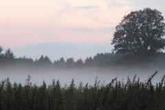 Lettland Lubana fängt Sonnensatz auf Stockfotos